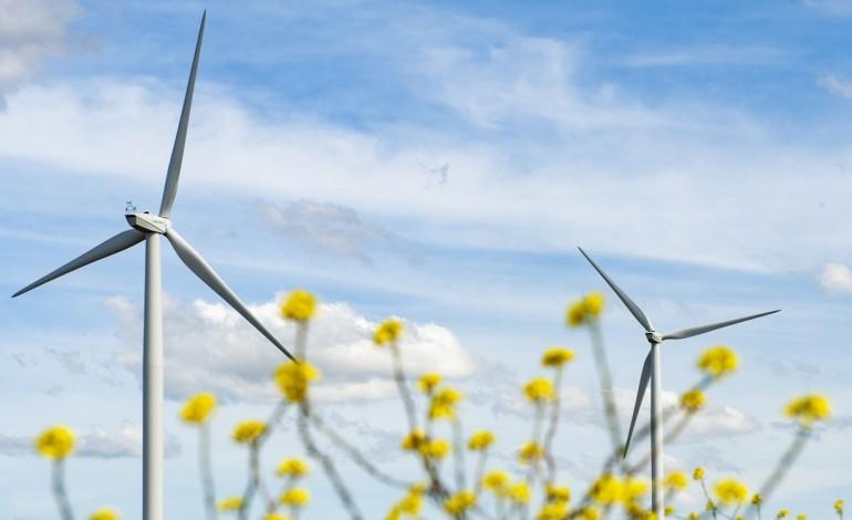 eolicas-produzem-energia-suficiente-para-toda-a-populacao-do-distrito-10155