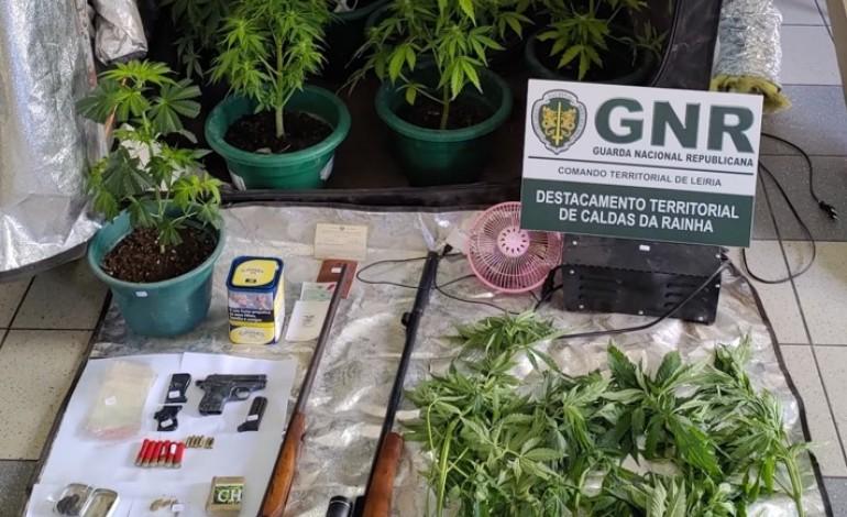 gnr-da-benedita-deteve-tres-homens-e-apreendeu-cocaina-haxixe-cannabis-e-armas-de-fogo