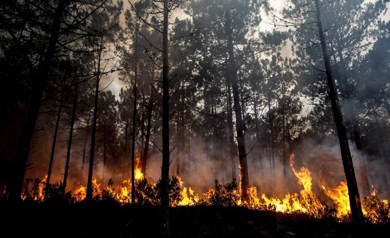 incendios-governo-declara-situacao-de-alerta-para-leiria-e-outros-13-distritos