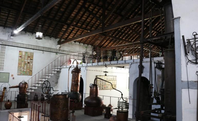 museu-do-vinho-de-alcobaca-abre-novas-areas-apos-requalificacao-de-460-mil-euros