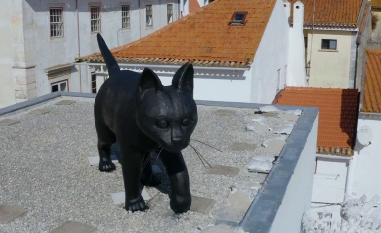 conhece-o-gato-preto-a-escultura-que-domina-os-telhados-de-leiria-10789