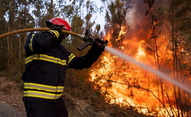 alvaiazere-e-figueiro-dos-vinhos-em-risco-maximo-de-incendio