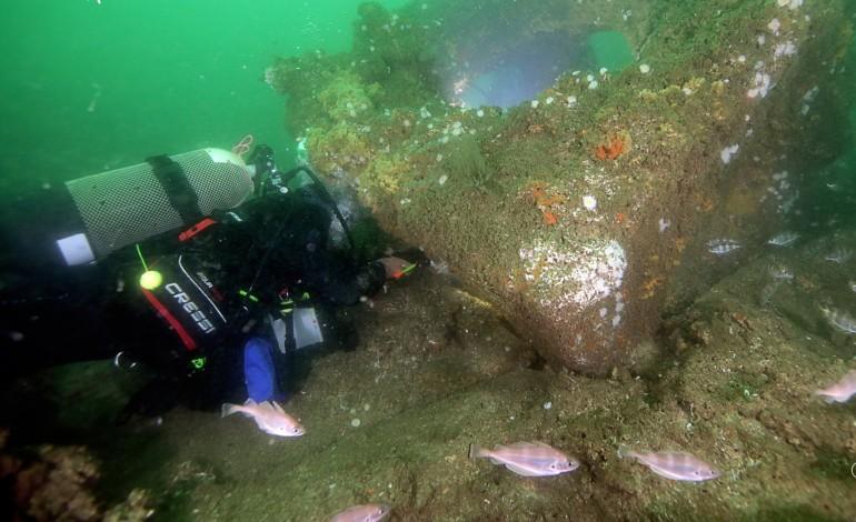 futuro-dos-recifes-artificiais-pode-passar-pelo-turismo-subaquatico