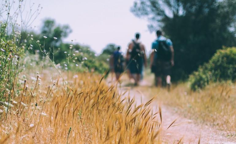 percursos-pedestres-em-terras-de-cister-mostram-17-trajectos-pelo-concelho-de-alcobaca