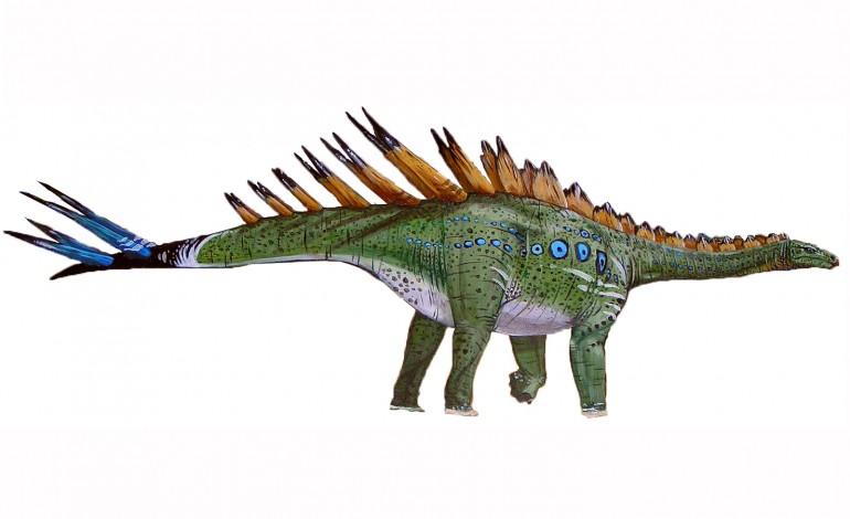 Miragaia longicollum, é do Jurássico Superior