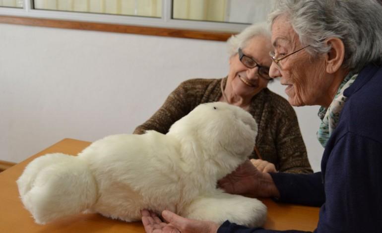 mizi-uma-foca-robot-que-ajuda-utentes-com-demencia-em-pombal-10768